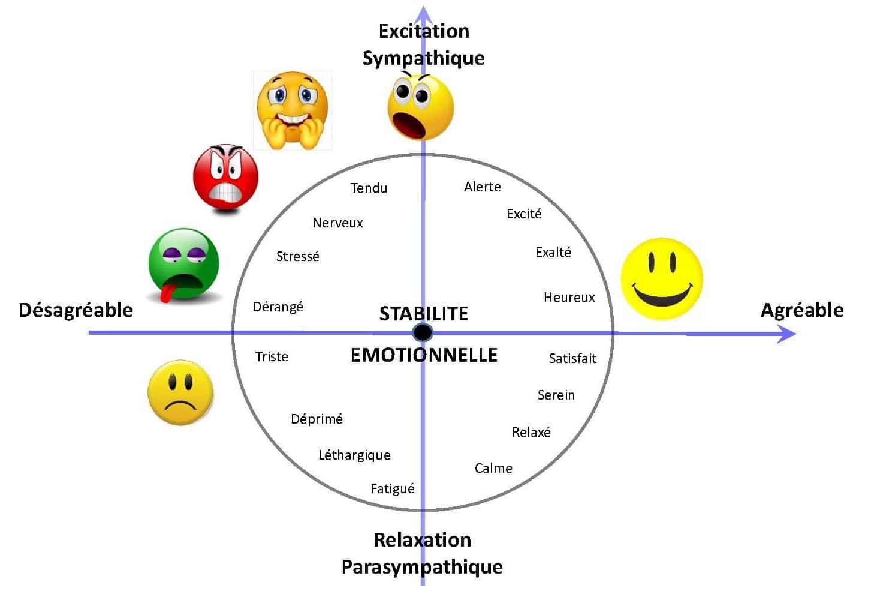 instabilité émotionnelle